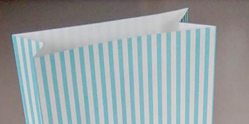 〈角底紙袋〉メガネ店用