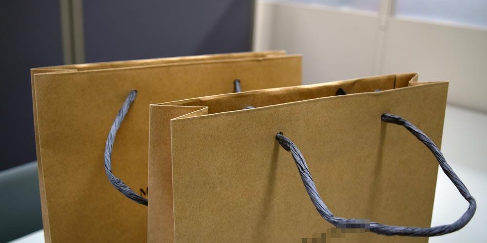 環境に配慮した材質に全て紙を使用した紙袋大サイズ(地域観光協会様向け)
