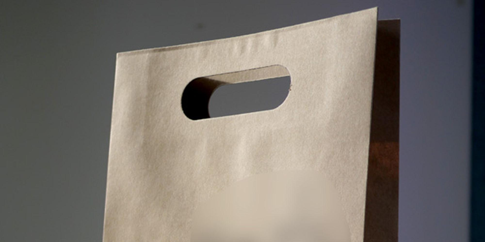 オープンキャンパスでの来場学生用、小判穴持ち手の手提げ紙袋(クラフト紙茶色仕様)